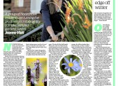 gardening page 5 August